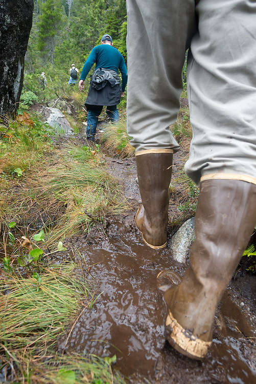 Hiking the muddy trail to Sadie Lake on Baranof Island, Alaska.
