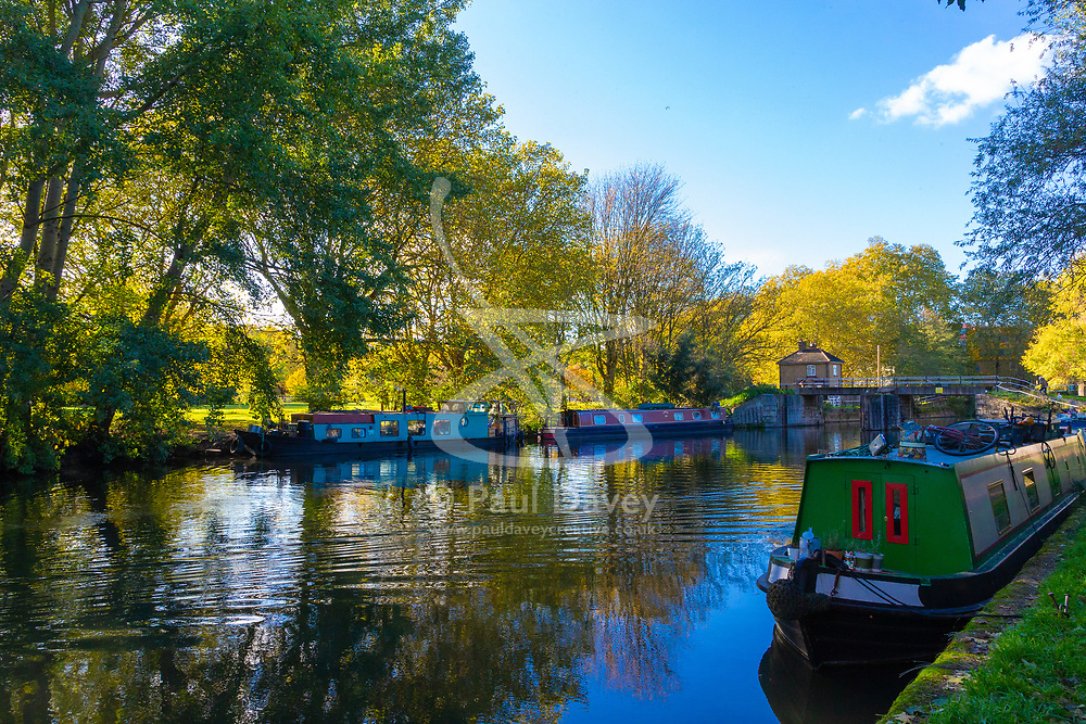 Mail Online: The barge Sunshine, left, which started out as an empty shell and is now a small but comfortable home nestles up against the opposite bank of the Lea Navigation in East London. North Hackney, London, November 02 2018.