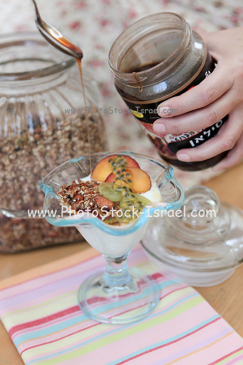 Healthy snack Yogurt and fruit Garnished with oats, nuts and Silan (Natural Date Honey or syrup)