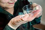 Nederland, Nijmegen, 3-3-2006..Oudere, bejaarde vrouw slikt haar medicijnen, pillen...Vergoeding zorgverzekeraar, zorgverzekering. ..Foto: Flip Franssen