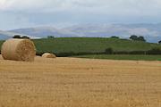harvest, field, bails, straw, crop, autumn