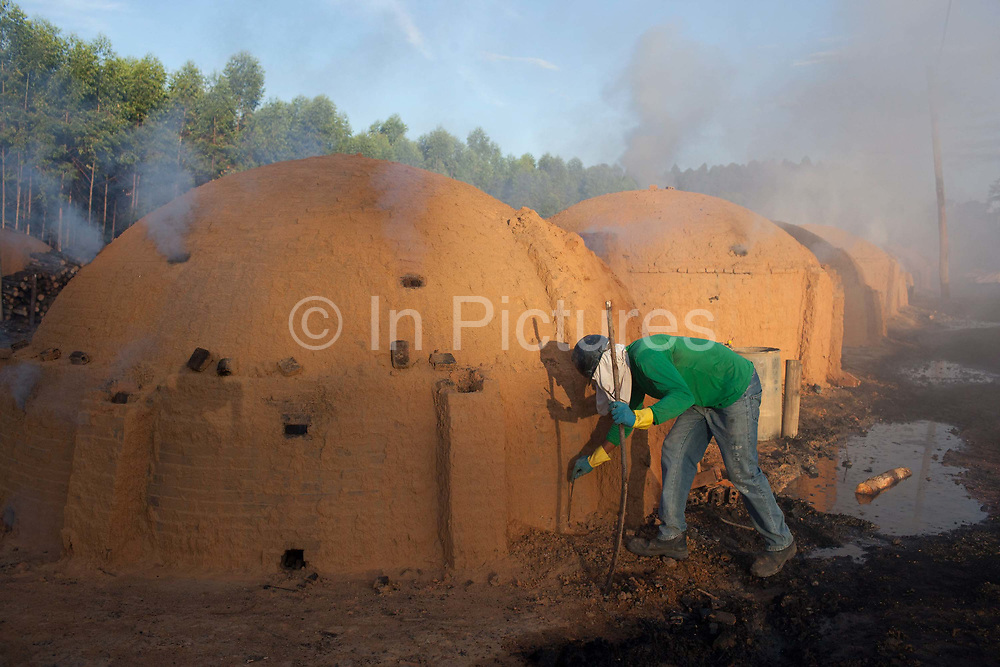 Brazilian man working in a charcoal buring site, Maranhao, northeastern Brazil, eucalyptus trees are grown primarily to fire the burners situated on the same site. Reports of poor working conditions and bonded labour have been reported at some of the sites.