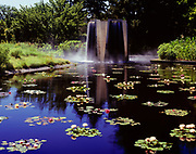 Waterlilies and fountain in pond near Anna's Overlook, Denver Botanic Gardens, Denver, Colorado.