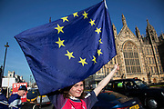Anti Brexit pro Europe demonstrators protest waving EU flags in Westminster opposite Parliament as MPs debate and vote on amendments to the withdrawal agreement plans on 14th February 2019 in London, England, United Kingdom.