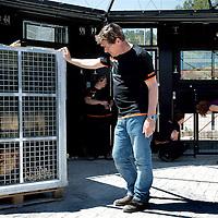 Spanje, Alicante,22 mei 2015.<br /> Stichting AAP die zich inzet voor opvang en welzijn van verwaarloosde dieren waaronder diverse apensoorten haalt nu verwaarloosde 2 tijgers en 2 leeuwen op bij een failliete circus in het plaatsje Lieusaint in de buurt van Parijs om ze vervolgens een betere toekomst te geven in opvangcentrum Primadomus in de buurt van Alicante Spanje.<br /> Op de foto: De 2 tijgers en leeuwen arriveren met de truck vanuit Frankrijk bij opvangcentrum Primadomus in de omgeving van Alicante. De kisten worden van de truck gehaald en de dieren worden geinstalleerd in hun nieuwe onderkomen. Eerst zullen ze enkele weken moeten rusten en wennen in een eerste kooi alvorens ze op een ruimer afgeschermd terrein mogen rondlopen.<br /> <br /> <br /> <br /> Foto: Jean-Pierre Jans