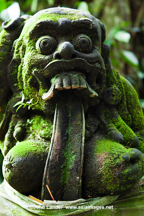 A Balinese togog, this one with an extremely long tongue,  is a decorative sculpted head, often decorated with flowers.  The facial expressions taking form from Balinese folk tales and legends.