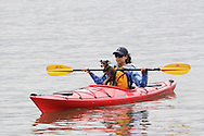 New Windsor, New York - A woman and her dog kayak on the Hudson River at the Paddlefest event sponsored by the Mid-Hudson Chapter of the Adirondack Mountain Club at Kowawese Unique Area at Plum Point on June 13, 2010.