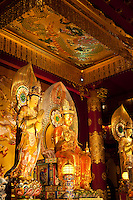 The Buddha Tooth Relic Temple is a Buddhist temple and museum complex located in Chinatown Singapore. The temple follows Tang dynasty architectural styles and built to house the tooth relic of Buddha.