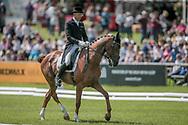 LASSBAN DIAMOND LIFT ridden by Bill Levett during the dressage at Bramham International Horse Trials 2017 at Bramham Park, Bramham, United Kingdom on 11 June 2017. Photo by Mark P Doherty.