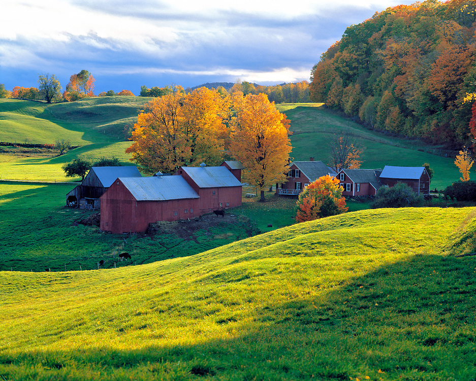 Rolling green hills surround picturesque Jenne Farm, south of Woodstock in Vermont.