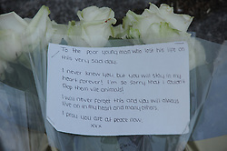 © Licensed to London News Pictures. 22/05/2013.Woolwich 'terrorist attack': One dead and two seriously injured. Woolwich Barracks,Woolwich.            .First flowers with message outside Woolwich barracks tonight 22.05.2013..Photo credit :Grant Falvey/LNP