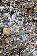A frozen stream trickling down a rocky and muddy shore at low tide, Northeast Harbor, Maine.