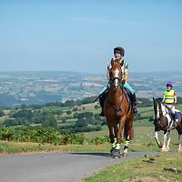 General Riding and Hacking