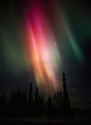 Spectacular green, red and yellow aurora viewed above boreal forest and the Alaska Range from Broad Pass, Alaska.