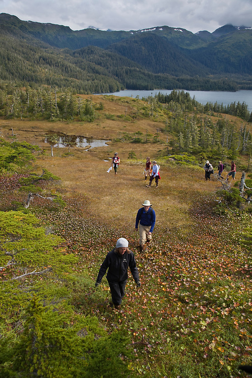A group of hikers walk through open meadows in an upland peat bog along College Fiord in northern Prince William Sound.