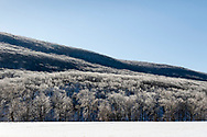 Cornwall, New York - The morning sun shines on ice covered fields and trees in a view from Clove Brook Farm on Feb. 13, 2019. Schunnemunk Mountain is in the backgrouind.