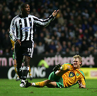 Fotball<br /> Foto: SBI/Digitalsport<br /> NORWAY ONLY<br /> 27.10.2004<br /> Carling Cup 3 runde<br /> <br /> Newcastle United v Norwich<br /> <br /> Newcastle's Titus Bramble (L) appeals to the referee as Norwich's Mathias Svensson (R) lies injured.