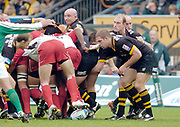 Wycombe. GREAT BRITAIN, 24th October 2004 <br /> Heineken Cup Rugby, London Wasps v Biarritz,  Adams Park, ENGLAND. Photo, Peter Spurrier/Intersport-images]<br /> Wasps Joe Worsley and Lawrence Dallaglio, wait at the edge, for Birritz No 8 Imanol Harinordoquy to pick up the ball <br /> ,
