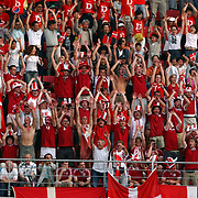 Denmark's fans celebrate victory in their first match