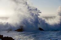 A large wave crashes over rocks along the California Coast.