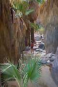 Hiking in Andreas Canyon, in the Indian Canyons of the Agua Caliente Indian Reservation, near Palm Springs, California. ( Model released)