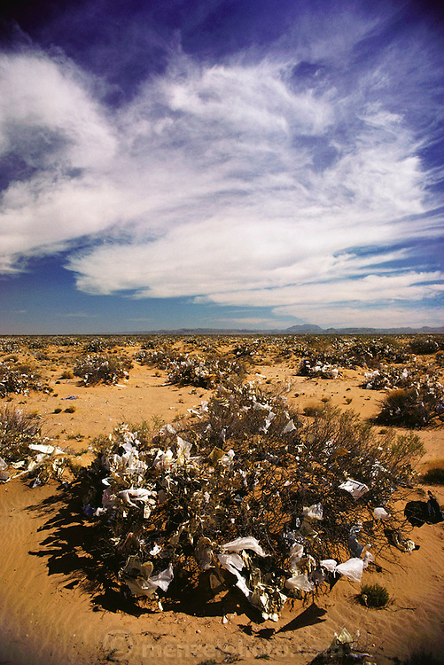 The desert near the landfill dump in El Paso, Texas is littered with plastic and paper blown from the dumpsite. Pollution, recycling.