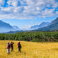 2015 Tracking Fire, Wolves, and Elk in Canadian Rockies