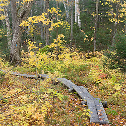 The Table Rock Trail on Baldpate Mountain in Maine's Grafton Notch State Park.  Fall.  Near the Appalachian Trail.