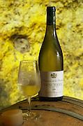 Oak barrel aging and fermentation cellar. Domaine de la Perriere, Sancerre, Loire, France