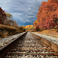 """""""Rails Ablaze""""<br /> <br /> If you love railroad tracks, then you'll love this image of cool rails, wonderful autumn foliage and stormy skies!!<br /> <br /> Autumn Landscapes by Rachel Cohen"""