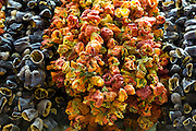 Dried capsicums peppers aubergines in Misir Carsisi Egyptian Bazaar food and spice market, Istanbul, Turkey