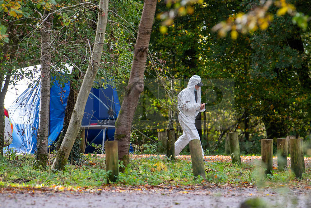 © Licensed to London News Pictures. 24/10/2020. Watlington Hill, UK. A forensic investigator in a carpark at the Watlington Hill National Trust Estate. A murder investigation has been launched by Thames Valley Police after the body of a woman in her sixties was located in woodland in the Watlington Hill National Trust Estate at approximately 5:53pm on Friday 23/10/2020. Photo credit: Peter Manning/LNP