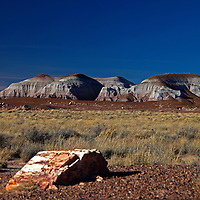 North America, USA, Arizona, Petrified Forest National Park - the Tepees of Blue Mesa.