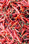 Red chillies in the spice market, Old Delhi, India