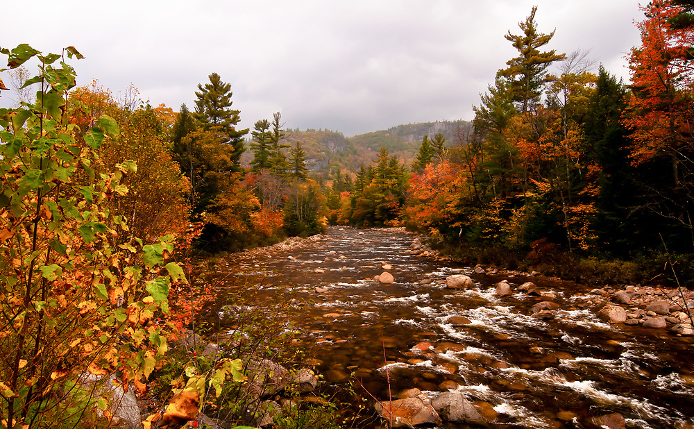 Boulder strewn, the auburn waters of the Swift River beside the Kancamagus Trail, NH offsets the Fall colors. Diffused light bounces vibrantly off the wet leaves.