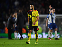 Football - 2019 / 2020 Premier League - Brighton & Hove Albion vs. Watford<br /> <br /> Watford's Adrian Mariappa who scored an own goal to equalise for Brighton & Hove Albion, at the Amex Stadium.<br /> <br /> COLORSPORT/ASHLEY WESTERN