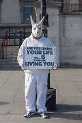 A street performer dressed as a white rabbit at Trafalgar Square on the 16th May 2019 in London in the United Kingdom.