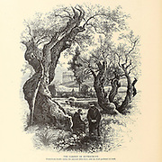 The Garden of Gethsemane Franciscan monks under the ancient olive trees. An Arab gardener at work in the background. from the book Picturesque Palestine, Sinai, and Egypt By  Colonel Wilson, Charles William, Sir, 1836-1905. Published in New York by D. Appleton and Company in 1881  with engravings in steel and wood from original Drawings by Harry Fenn and J. D. Woodward Volume 1