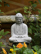 a little Buddha statue placed in a home garden