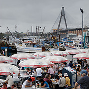 The Sydney Fish Market