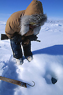 Inuit hunter Simon Idlout hunting seals by waiting at a seal's breathing hole, Resolute, Nunavut, Canada, Arctic