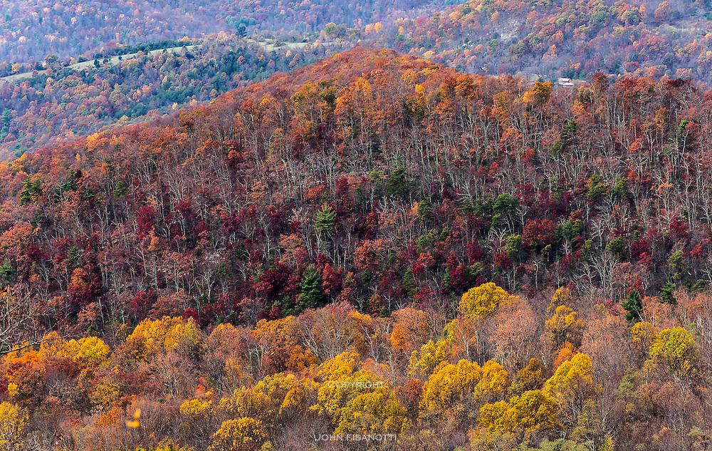 Hillside, Shenandoah National Park