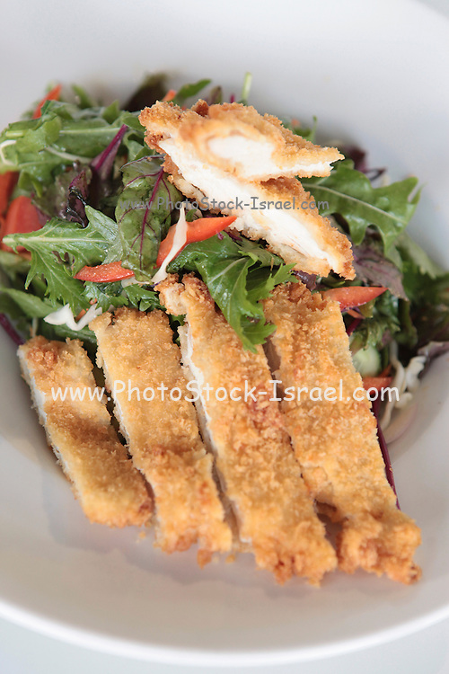 Fried Breaded Chicken Breast
