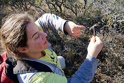 Estela Luengos Vidal Taking Sample of Dung