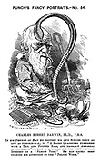 """Charles Robert Darwin, LL.S., F.R.S. In his Descent of Man he brought his own species down as low as possible - i.e., to """"A hairy quadruped furnished with a tail and pointed ears, and probably arboreal in its habits"""" - which is a reason for the very general interest in a """"family tree."""" He has lately been turning his attention to the """"politic worm."""""""