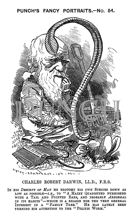 "Charles Robert Darwin, LL.S., F.R.S. In his Descent of Man he brought his own species down as low as possible - i.e., to ""A hairy quadruped furnished with a tail and pointed ears, and probably arboreal in its habits"" - which is a reason for the very general interest in a ""family tree."" He has lately been turning his attention to the ""politic worm."""