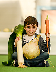 Pictured: Dylan Carmichael (6) from Gourock admires some of the prize-winning vegetables.<br /> <br /> Giant vegetables were on show at the world famous Strathclyde Leek & Onion Society annual show, at Cardwell Garden Centre in Gourock. <br /> <br /> © Dave Johnston / EEm