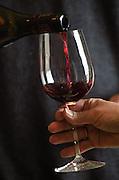 Chateau Peuch-Haut, St Drezery. Gres de Montpellier. Languedoc. Tasting wine. France. Europe. Bottle. Wine glass.