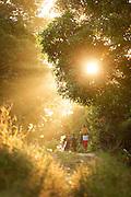 People walk down path above Tufi resort at sunset, Tufi, Cape Nelson, Oro Province, Papua New Guinea