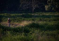 © Licensed to London News Pictures. 25/06/2020. London, UK. A cyclist enjoys the warm conditions in the early morning at Richmond Park in west London. Record temperatures are expected this week as the UK starts to relax lockdown restrictions, introduced earlier this year to prevent the spread of COVID-19.<br /> Photo credit: Marcin Nowak/LNP